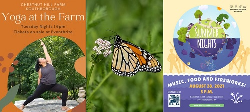 Post image for Events this week: Yoga on the Farm, Tech Time, Magic Show, Butterfly Hike, and Summer Nights